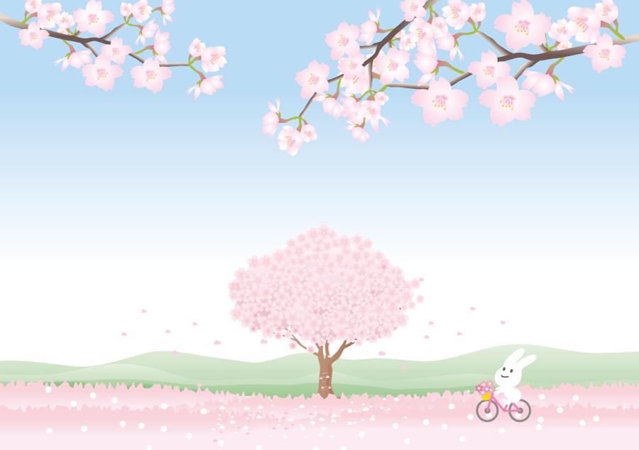 フリーイラスト 満開の桜の木と自転車で駆けるうさぎ