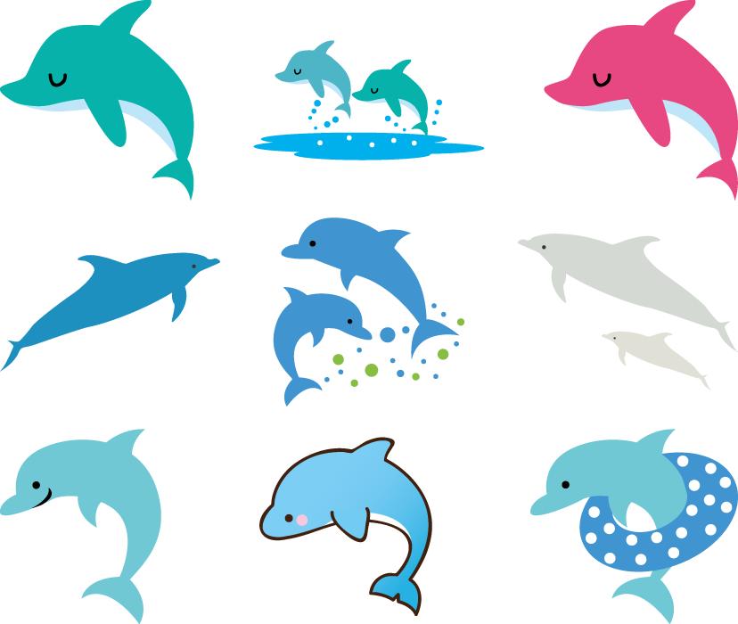フリーイラスト 9種類のイルカのセット