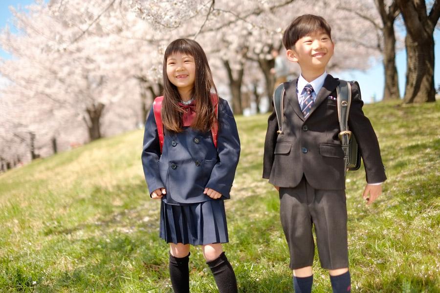 フリー写真 満開の桜の木々と小学生の男の子と女の子の