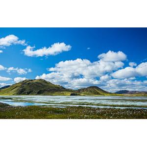 フリー写真, 風景, 自然, 丘, 青空, 雲, 花畑, アイスランドの風景