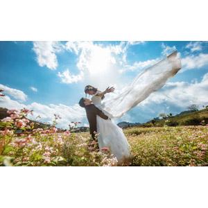 フリー写真, 人物, カップル, 花婿(新郎), 花嫁(新婦), 結婚式(ブライダル), 二人, ウェディングドレス, 抱き上げる, 人と風景, 花畑, 手を広げる, 青空