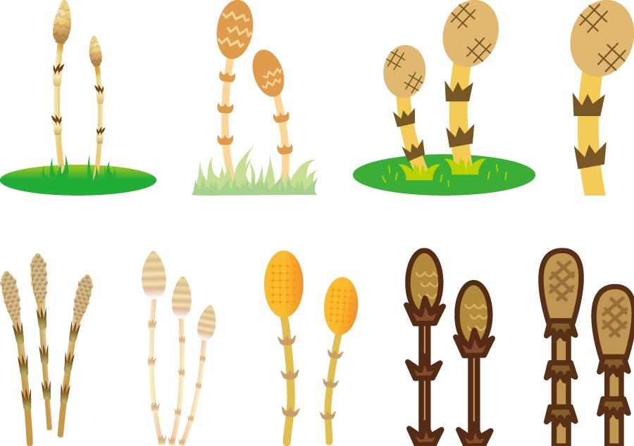 フリーイラスト 9種類のつくしんぼうのセット