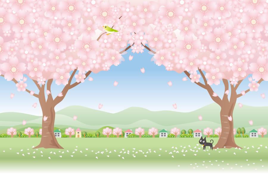 フリーイラスト 満開の桜の木と鶯と黒猫