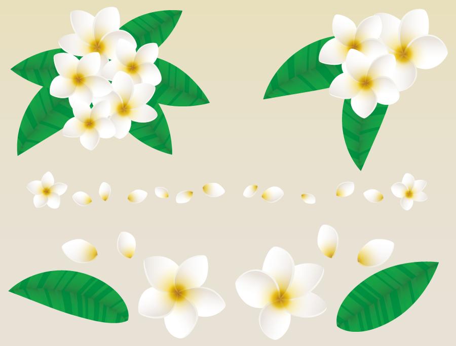 フリーイラスト プルメリアの花と花びらと葉のセット