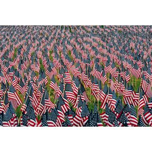 フリー写真, 国旗, 旗(フラッグ), アメリカの国旗(星条旗), 戦没将兵追悼記念日, 5月, アメリカの風景
