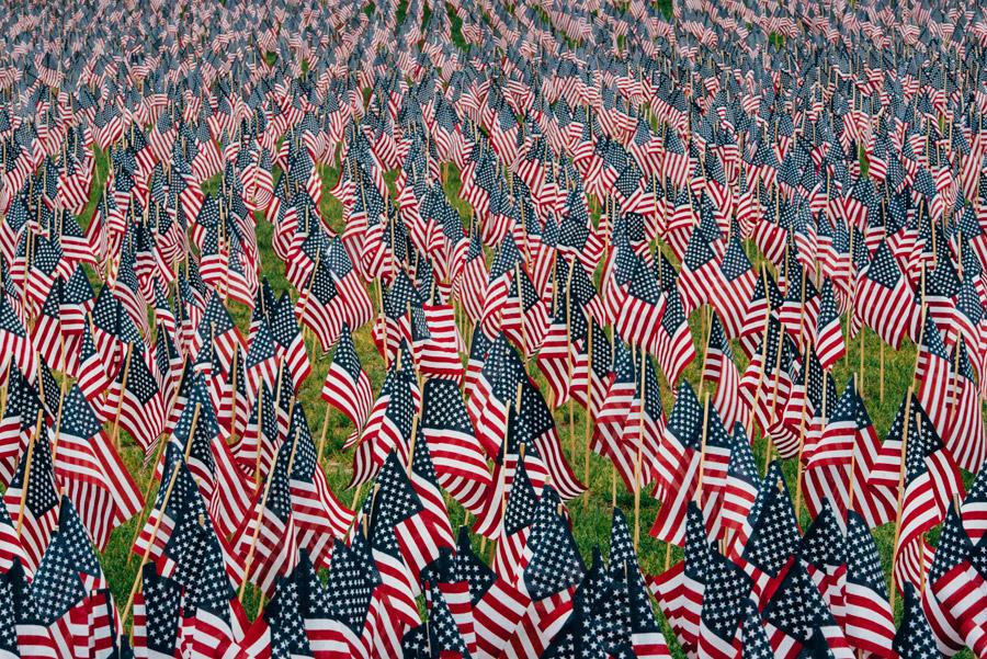 フリー写真 星条旗が並べられたメモリアルデー