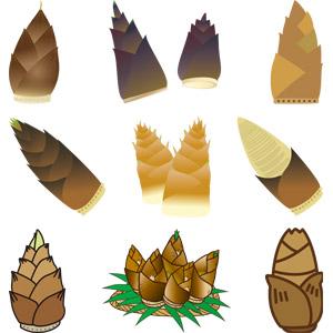 フリーイラスト, ベクター画像, AI, 竹の子(タケノコ), 食べ物(食料), 野菜, 植物