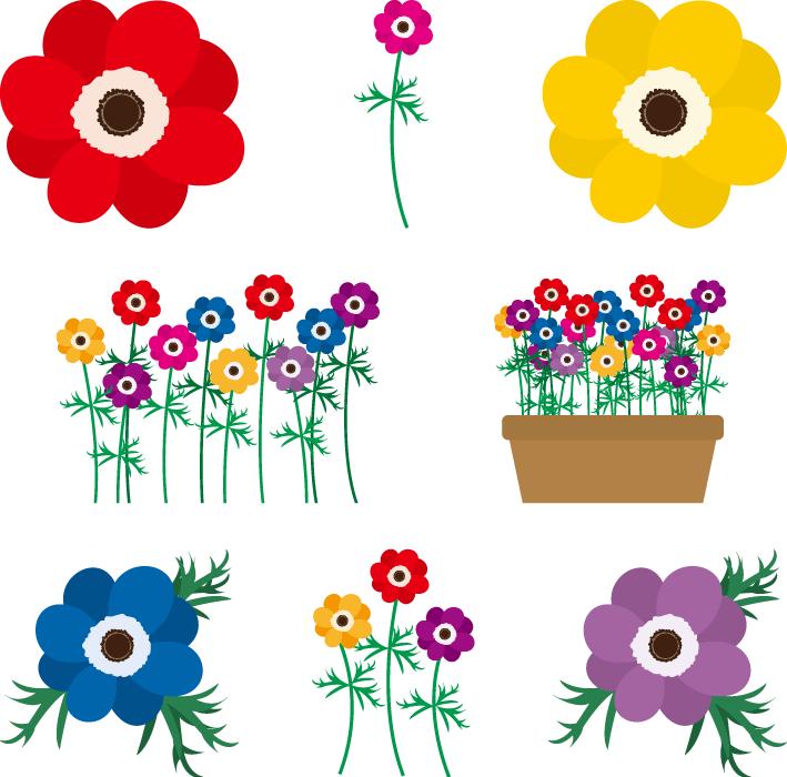 フリーイラスト 8種類のアネモネの花のセット