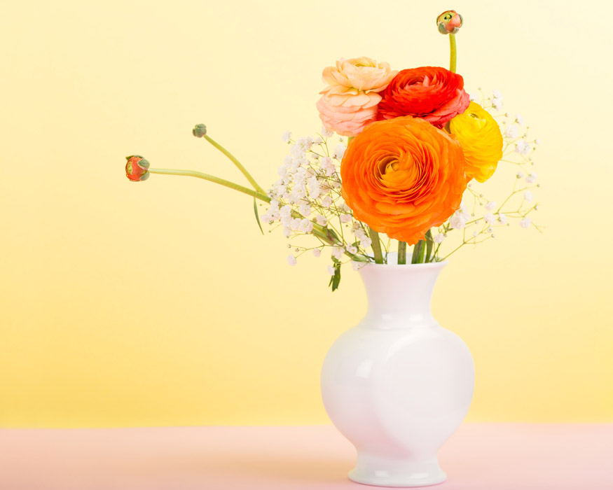 フリー写真 花瓶の中のラナンキュラスの花