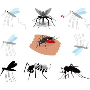 フリーイラスト, ベクター画像, AI, 動物, 昆虫, 蚊