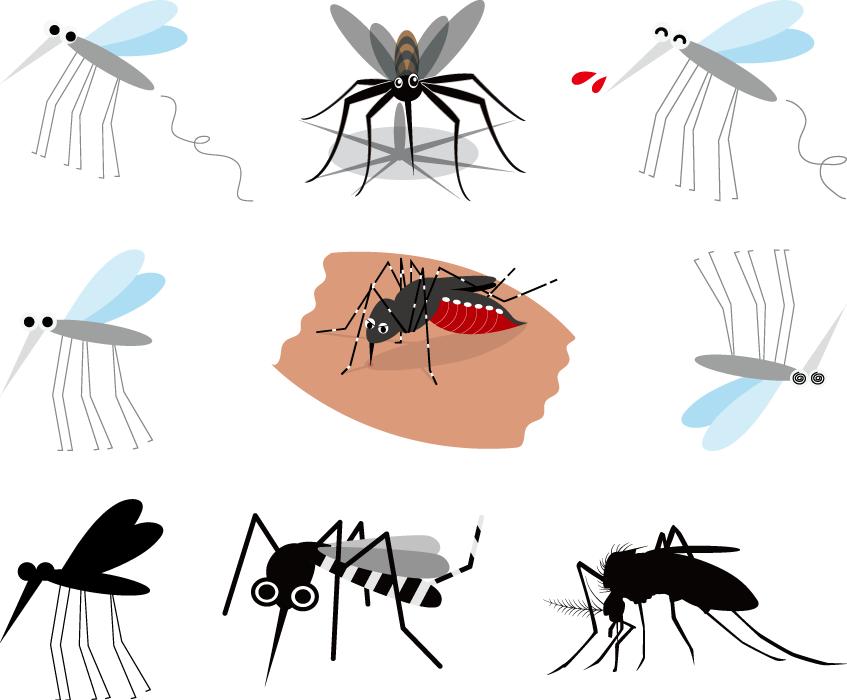 フリーイラスト 9種類の蚊のセット