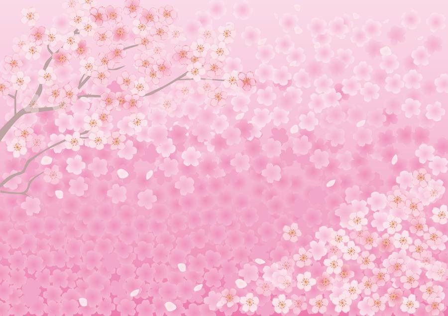 フリーイラスト さくらの花の背景
