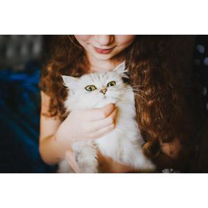 フリー写真, 人物, 女性, 外国人女性, 人と動物, 動物, 哺乳類, 猫(ネコ)