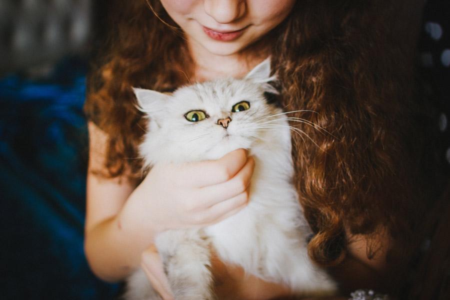 フリー写真 女性に抱かれている猫