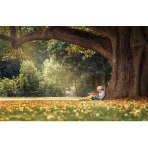 フリー写真, 人物, 子供, 男の子, 外国の男の子, 本(書籍), 読む(読書), 勉強(学習), 人と風景, 樹木, 麦わら帽子, 座る(地面)