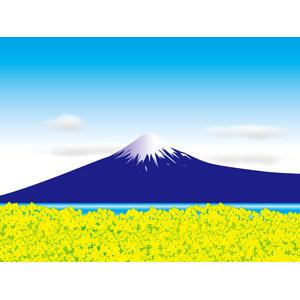 フリーイラスト, ベクター画像, AI, 風景, 山, 富士山, 日本の風景, 世界遺産, 花畑, 菜の花(アブラナ), 黄色の花, 春