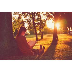 フリー写真, 人物, 少女, 外国の少女, 勉強(学習), 読む(読書), 本(書籍), 人と風景, 樹木, 夕暮れ(夕方), 夕日, 座る(地面)