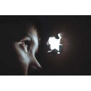 フリー写真, 人物, 隠れる, 覗く, 段ボール(ダンボール), 箱(ボックス)
