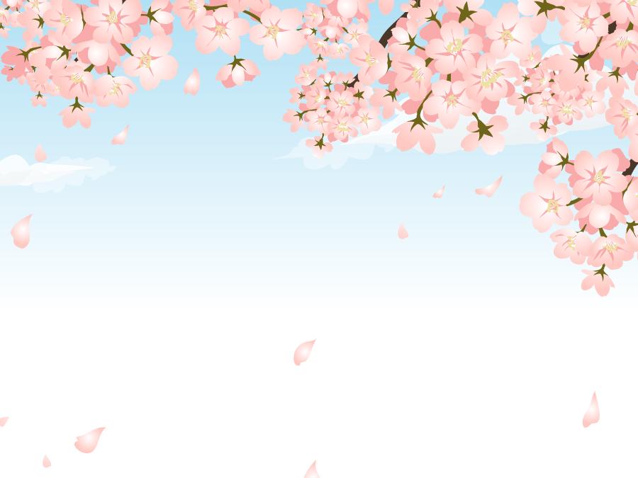 フリーイラスト 青空とさくらの花