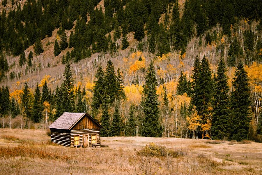 フリー写真 小屋と山の木々の風景