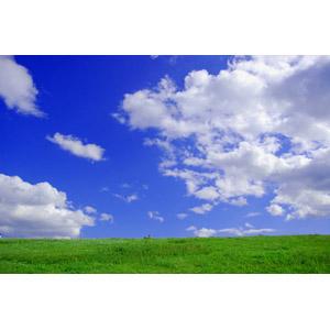 フリー写真, 風景, 河川敷, 草むら, 青空, 雲, 日本の風景