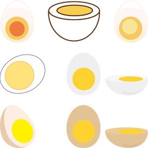 フリーイラスト, ベクター画像, AI, 食べ物(食料), 料理, 卵料理, 卵(タマゴ), ゆで卵
