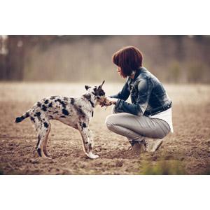 フリー写真, 人物, 女性, 外国人女性, ショートヘア, 人と動物, 動物, 哺乳類, 犬(イヌ), 子犬, しゃがむ
