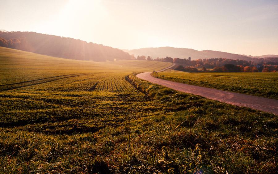 フリー写真 牧草地と小道の田舎の風景