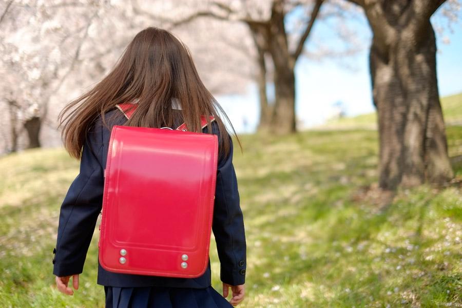 フリー写真 ランドセルを背負って桜並木を歩く女の子の後ろ姿