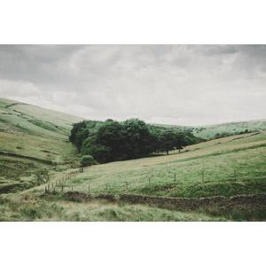 フリー写真, 風景, 牧場, 牧草地, 田舎, イギリスの風景, イングランド