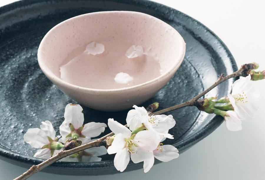 フリー写真 日本酒と桜の花が咲く枝