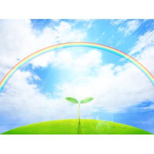 フリーイラスト, 風景, 自然, 空, 雲, 青空, 虹, 植物, 新芽, 水滴(雫), エコロジー, 太陽光(日光)