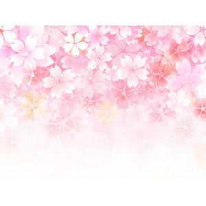 フリーイラスト, 背景, 花, 花柄, 桜(サクラ), ピンク色, 春
