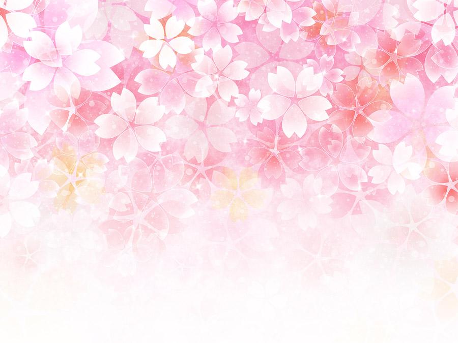 フリーイラスト さくらの花柄の背景