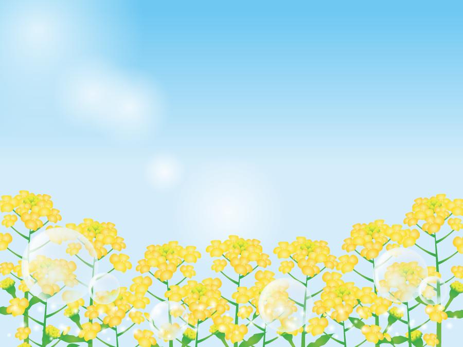 フリーイラスト 菜の花畑としゃぼん玉と青空