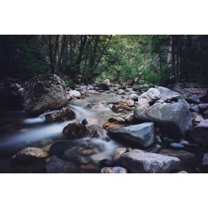 フリー写真, 風景, 自然, 河川, 渓流, 森林, アメリカの風景, カリフォルニア州