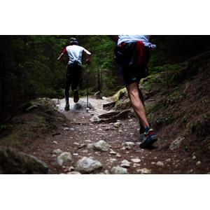フリー写真, スポーツ, 陸上競技, トレイルランニング, 走る, ストック, 登山, アウトドア, 後ろ姿