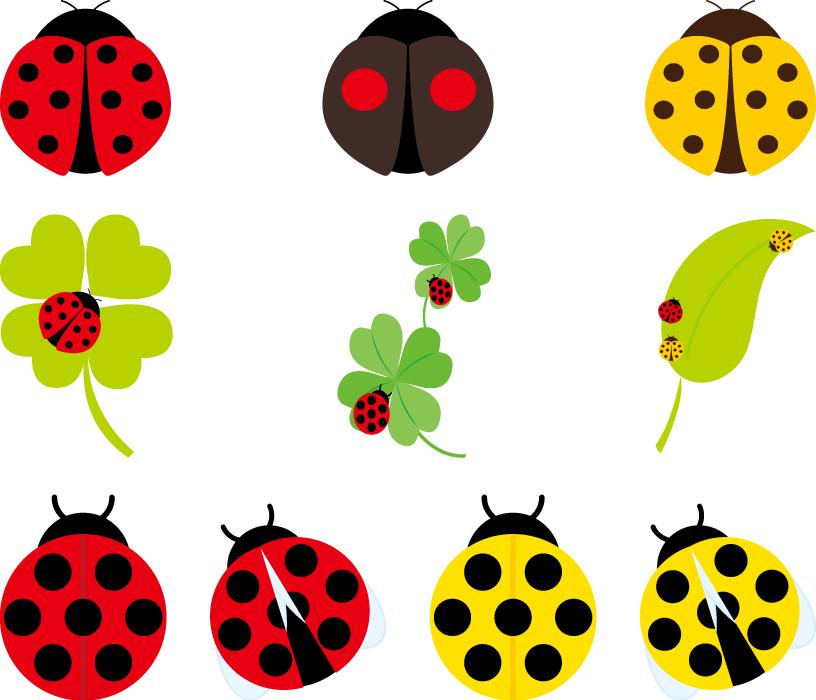 フリーイラスト 10種類のてんとう虫のセット