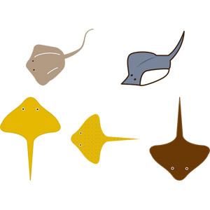 フリーイラスト, ベクター画像, AI, 動物, 魚類, 鱏(エイ)