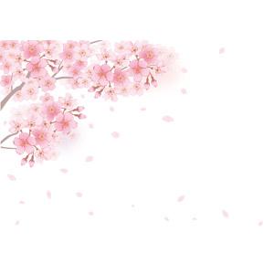フリーイラスト, ベクター画像, AI, 背景, 植物, 花, 桜(サクラ), ピンク色の花, 蕾(つぼみ), 花びら, 桜吹雪, 春