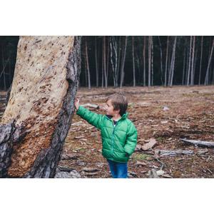フリー写真, 人物, 子供, 男の子, 外国の男の子, 樹木, ダウンジャケット, ポケットに手を入れる