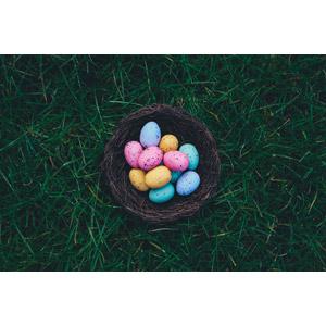 フリー写真, 年中行事, 復活祭(イースター), 春, 卵(タマゴ), 草むら