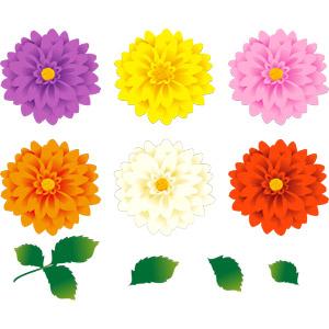 フリーイラスト, ベクター画像, AI, 植物, 花, ダリア, 葉っぱ