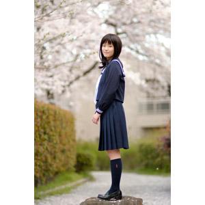 フリー写真, 人物, 少女, アジアの少女, 日本人, 少女(00048), 学生(生徒), 高校生, セーラー服(学生服), 学生服, 人と花, 桜(サクラ), 春