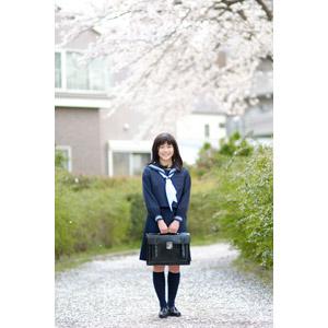 フリー写真, 人物, 少女, アジアの少女, 日本人, 少女(00048), 学生(生徒), 高校生, セーラー服(学生服), 学生服, 人と花, 桜(サクラ), 春, 通学鞄