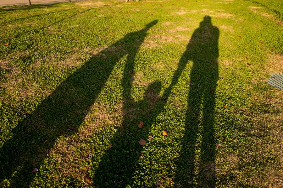 フリー写真 手をつなぐ三人家族の影