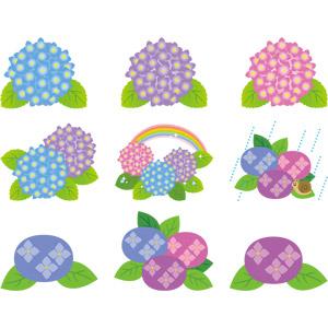 フリーイラスト, ベクター画像, AI, 植物, 花, 紫陽花(アジサイ), 梅雨, 6月, 虹