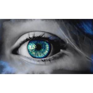 フリー写真, 人体, 目(眼)