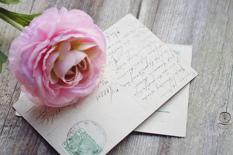 フリー写真 古いはがきとバラの花