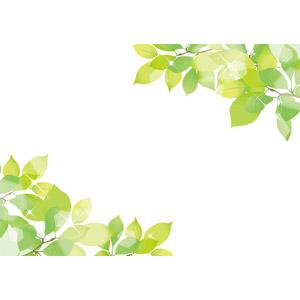 フリーイラスト, ベクター画像, AI, 背景, フレーム, 対角フレーム, 植物, 葉っぱ, 新緑